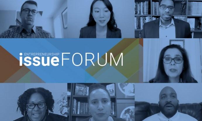 Entrepreneurship Issue Forum webinar participants